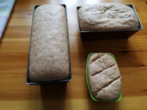 pan de espelta integral con Thermomix